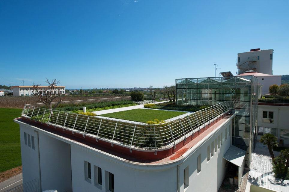 Vista del jardín de la azotea de la antigua cooperativa vinícola